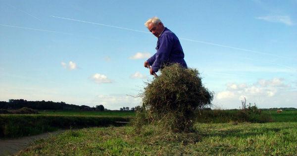 Werken Verstandelijk Gehandicapt Klompenhoeve Gras Hooi