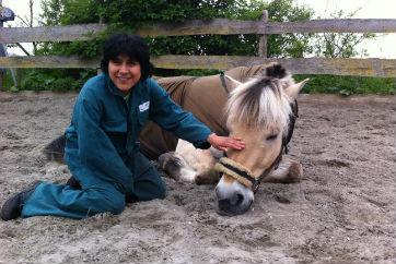 Werken Verstandelijk Gehandicapt Klompenhoeve Paard Paarden Paardrijden